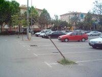 Un árbol caído en el parking del Sicarm...¿o era tirado?