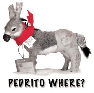 Front of Pedrito shirts