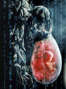Risultati immagini per matrix catene macchine