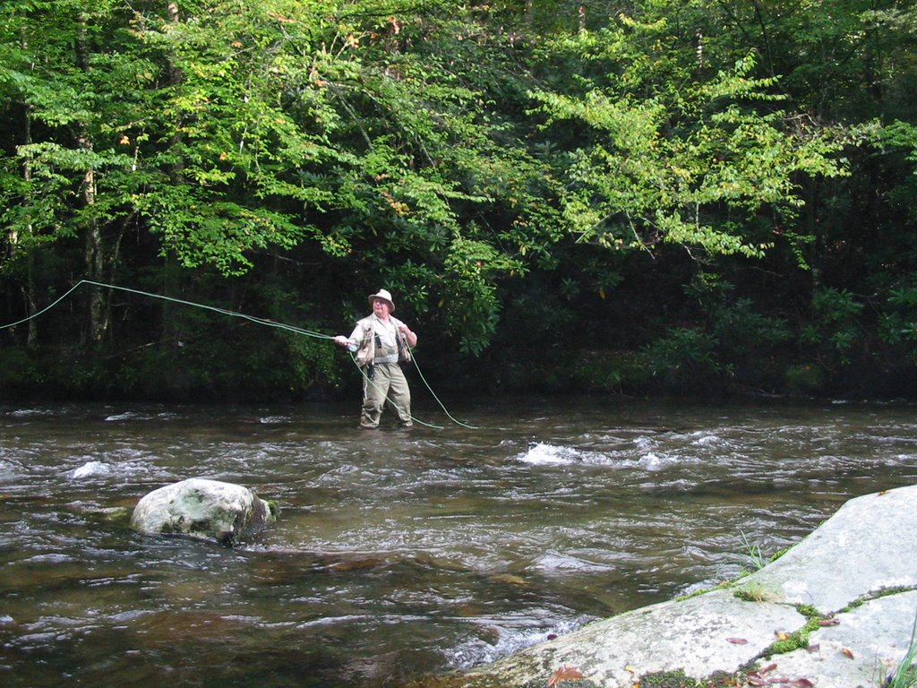 From the tennessee plateau smoky mountain fly fishing for Smoky mountain trout fishing