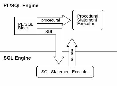 bulk collect in oracle