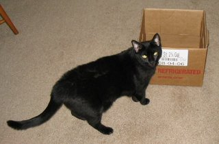 Me posing with a box