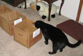 Here's Me, inspecting one of these boxes.