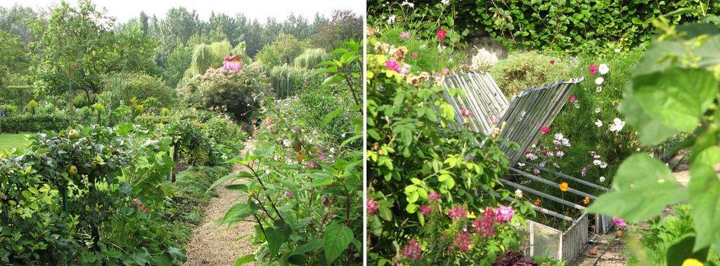 bordurettes de jardin