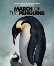 A Marcha dos Pinguins @ Voz Oblíqua