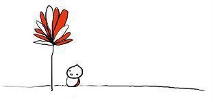 A Flor e a Gotinha