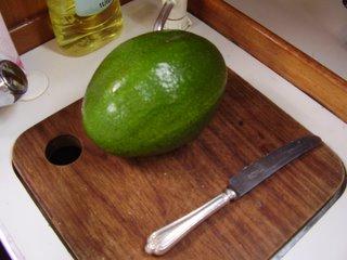 Monster avocado