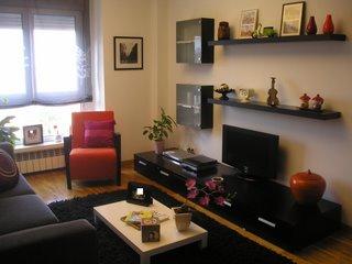 que como zona principal de la casa se desarrollan en el saln por otro estaba la necesidad de aprovechar las piezas de mobiliario que posean - Decorar Salon Comedor Rectangular
