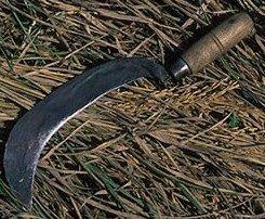 Blogeswari: Aruval -vs- Blade