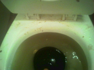Plugged-up toilet