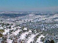 Vista panorámica del Olivar desde La Chimorra