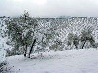 La sierra, nevada