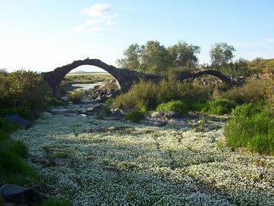 Puente sobre el Guadamatilla
