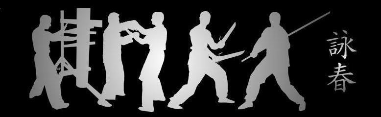 wing tsun kung fu pdf