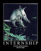 Internship motivator