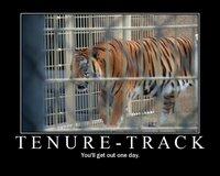 Motivator: Tenure-track