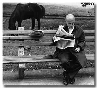 L'homme sur Banc, bis - Central Park, NYC 1974