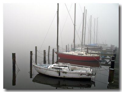 Marina in Fog - Canon A620 Review