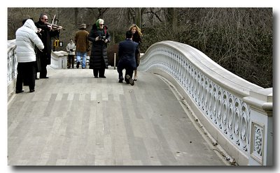 The Proposal - Bow Bridge, Central Park NYC