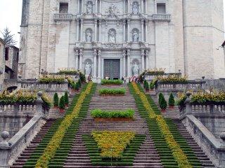 Escales de La Catedral