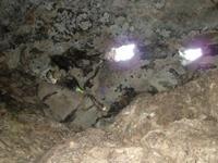 A Tábor-hegyi barlang 'teteje'
