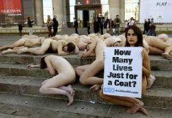 Albert Gea - P.E.T.A. anti fur fashion protest in Barcelona