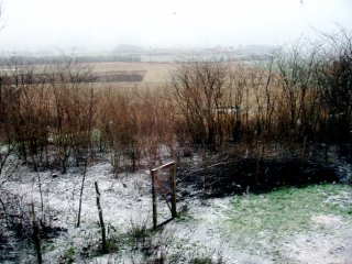 Denmark snows