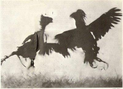 Gallos Chinos. Revista Planeta Nro 1, 30-09-64