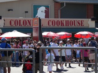 But is the picture above the Colon Cookhouse a cow or a cockatoo?