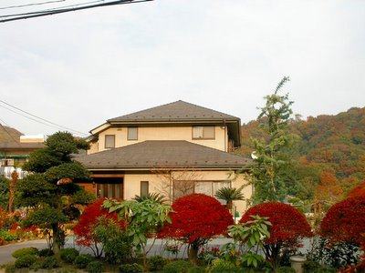 House with red trees in front