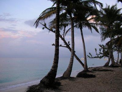 Una puesta de sol en el Caribe,... el cielo, el mar, los cocoteros,... debemos proteger nuestros paraisos para que nuestros descendientes puedan seguir disfrutando de las bellezas de este planeta. En esas aguas pasé el mejor momento del viaje: ron, el amanecer, bailando, cantando y riendo con mi inseparable hermano Nando, la alegría del grupo Vicky, y la revelación Silvia. Para el recuerdo.