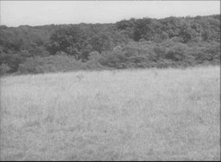 Francotiradores de la 2ª Guerra Mundial, la película.