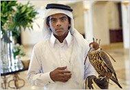 a falcon handler