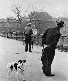 Robert Doisneau, Foxterrier on  the Pont des Arts