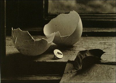 Still Life from the Studio of Josef Sudek