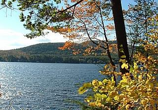 lake view and foliage