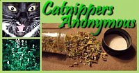 catnipanonymous.blogspot.com