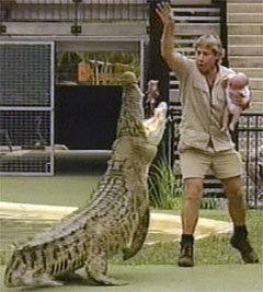 Steve Irwin dangling his baby in front of a crocodile