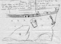 haai naast Volendam - klik om te vergroten
