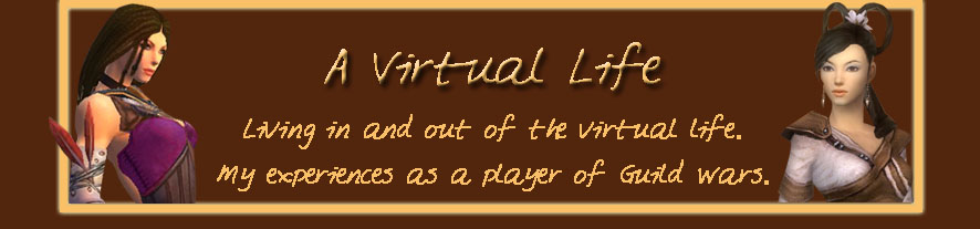 A Virtual Life