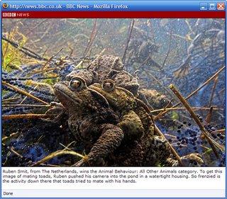 BBC Ruben Smit Toad Orgy