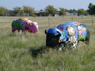 Buffalo's at Windland Park