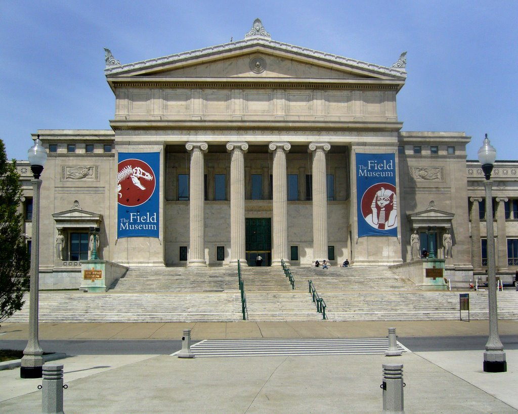 download the field museum - photo #23