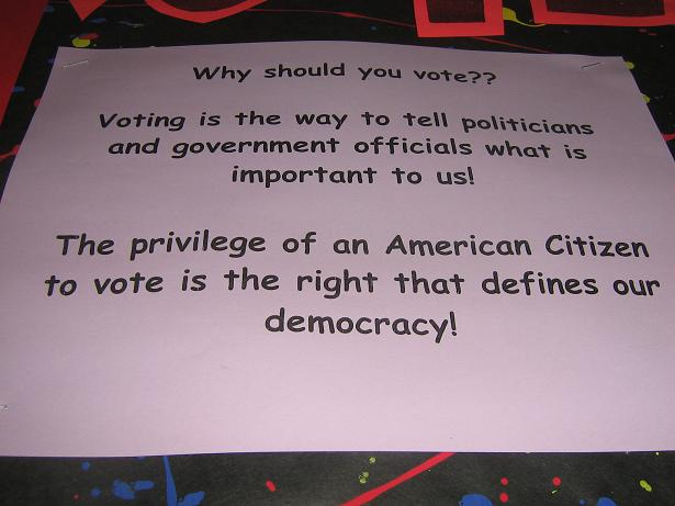 essays on voting rights