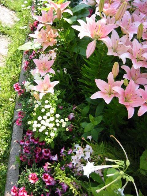 de quem possui um enorme jardim basta que tenha um lugar destinado