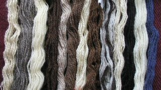 My handspun rare breed yarns so far.