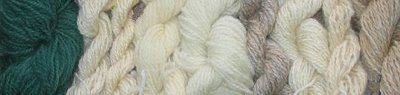 Light rare breed yarns in natural colors.
