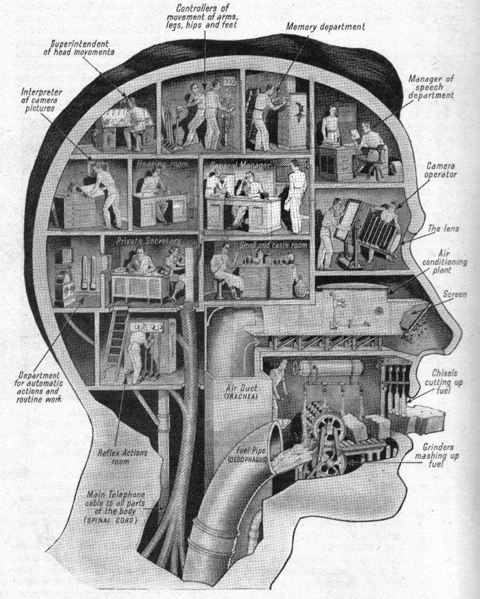 BibliOdyssey: Industrial Anatomy
