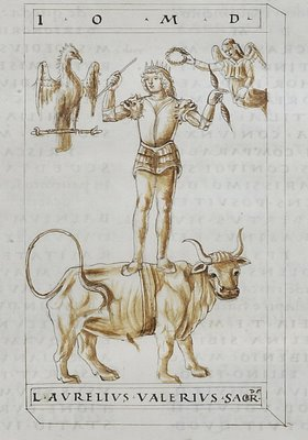 man standing on the back of a bull