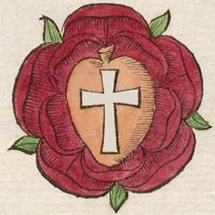 cruce rosea